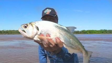 O rico e farto Rio Araguaia