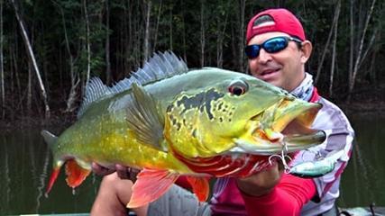 Momento da Pesca - Os gigantes do Itapará