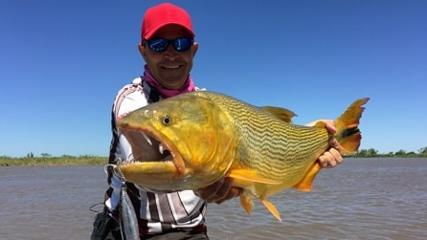 A desafiante pescaria de dourados