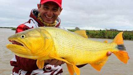 Pescaria de dourado com isca natural em La Paz