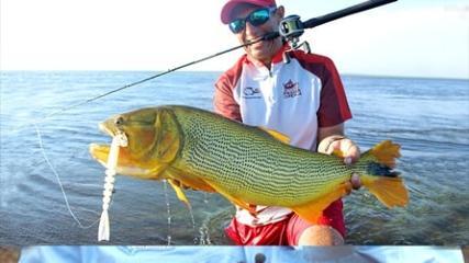Pescaria de dourados gigantes em Esteros del Iberá