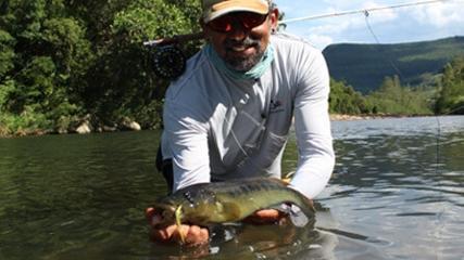 Em busca dos jacundás no rio Maquine