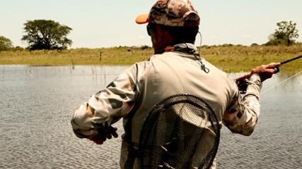 Uma caçada as grandes traíras argentinas