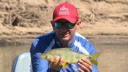 Pescaria de piauçus no rio Miranda
