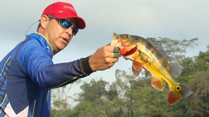 Variada pescaria na Amazônia