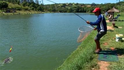 Pescaria de peixes redondos entre amigos