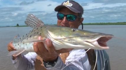 As surpresas de uma pescaria de surubim