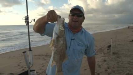 Pesca de robalo no litoral catarinense