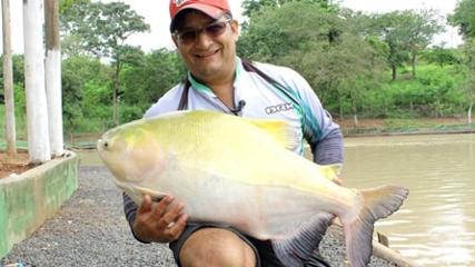 Pescaria de gigantes com isca natural