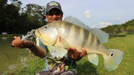 Pescaria incessante no Recanto dos Gigantes