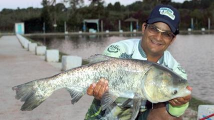 Peixe dia e noite no Pesqueiro Cat Fish