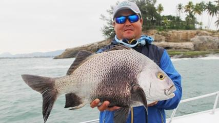 Pesca com jigs na costeira do Guarujá