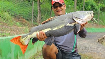 Pescaria de gigantes no Pesqueiro Recanto dos Peixes