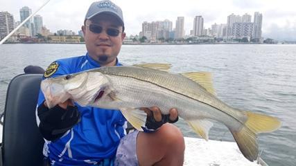 Pesca variada com isca viva
