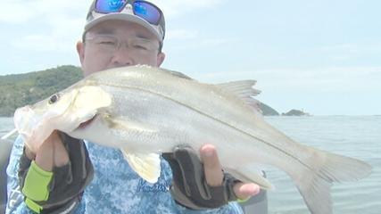 Pescaria de robalo em mar abrigado