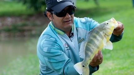 Várias técnicas e um só peixe: o tucunaré