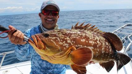 Pescaria de pargos em mar aberto