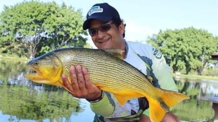 Peixes briguentos do Pesqueiro Três Lagoas