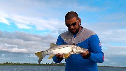Grandes peixes do rio São Francisco