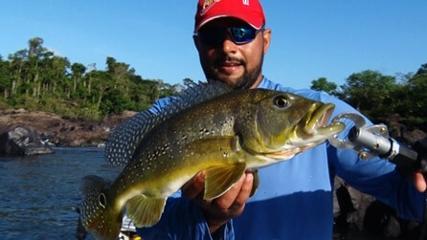 Tucunaré no rio Xingu