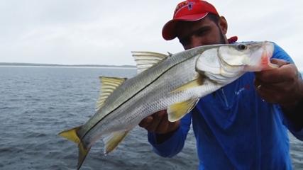 Pescaria de robalos no Pará