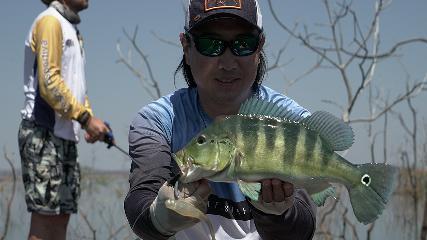 Pesca exploratória com convidado