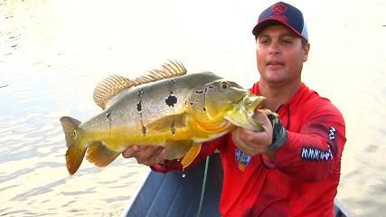 Muita ação na pesca no rio Trombetas