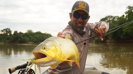 Dourado, o rei do rio Cuiabá