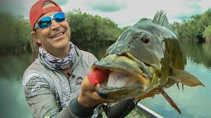 Pura ação com os tucunarés do rio Itapará