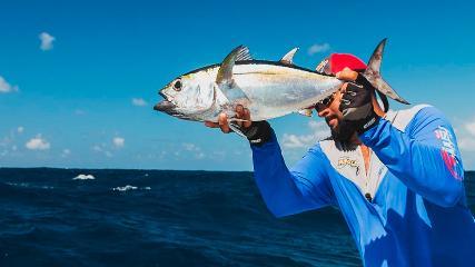 Brigas pesadas com os peixes de mar