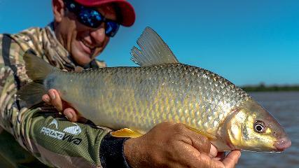 Pasión por la Pesca - Ceva na água e piaparas na linha