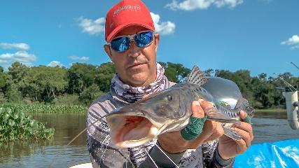 Peixes de couro e escamas na Argentina