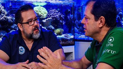 Testes químicos, mídias filtrantes e aquários plantados