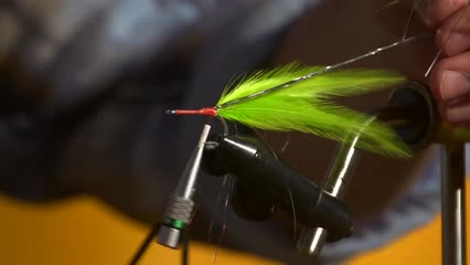 Clouser minnow, popper e streamer seaducer