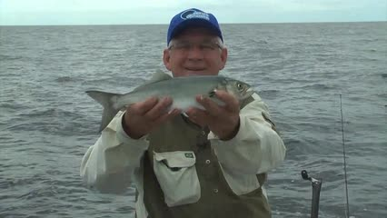 Pescaria de anchovas com Jumping Jig