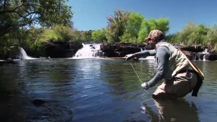 Pescaria entomológica de trutas arco-íris