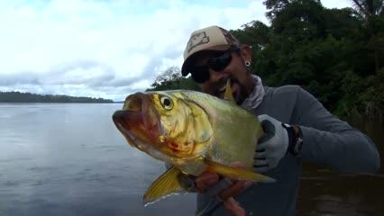 Fisgando apapá nas águas do rio Trombetas, na Amazônia