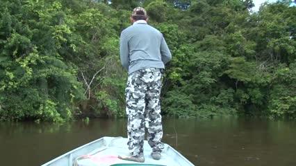 Apapás no Rio Trombetas