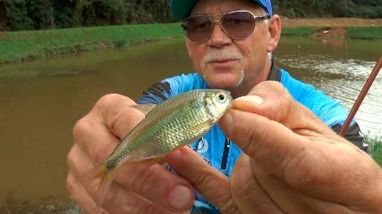 Pescaria de Lambaris em Barranco