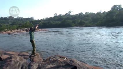 A pesca esportiva no rio Aripuanã