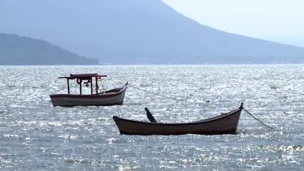 Florianópolis: Cultivo de Moluscos e Fenaostra