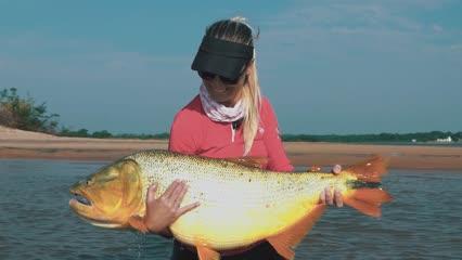 Rio Paraná e seus dourados gigantes