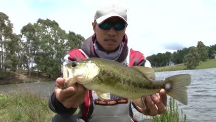 Pescaria de black bass em canela utilizando Flórida