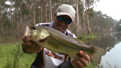 Pescaria de bass utilizando plugs