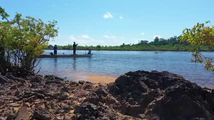 Peixes variados do Rio Xingu