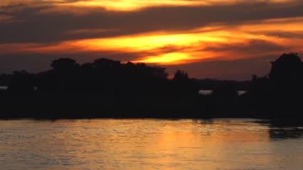 Pasión por la Pesca - Dourados do Rio São Lourenço