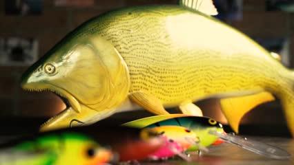Diferentes iscas para a pesca de dourado