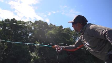 Gigantes do Itapará – Parte II