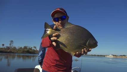 Pescaria de piaus no Rio Paraguai