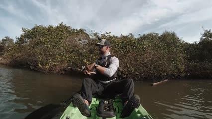 Expedição Porto Belo: O Retorno